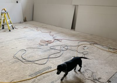 Studio sheetrock - and Matilda (woof)